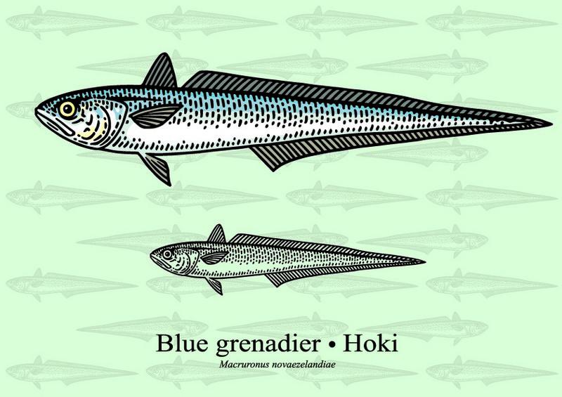 ryby mrożone - miruna